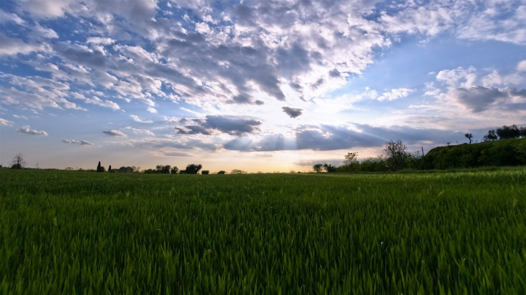 Timelapse sunset field italy