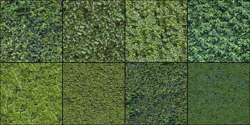 Hedge texture pack