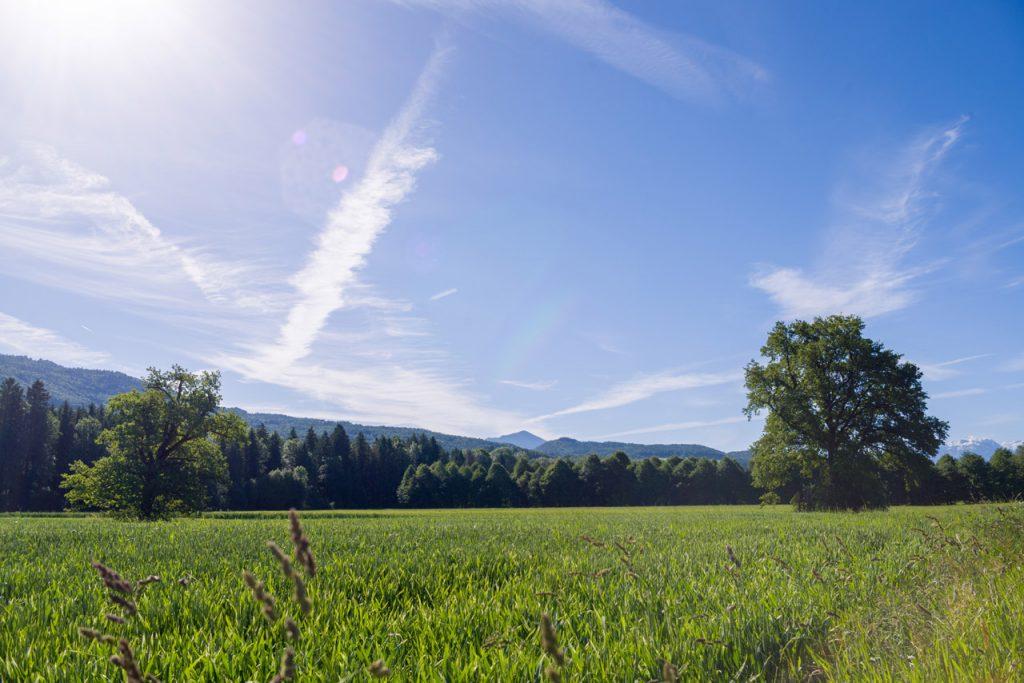 Hdri 360 176 Field Summer With Nice Alpine Background