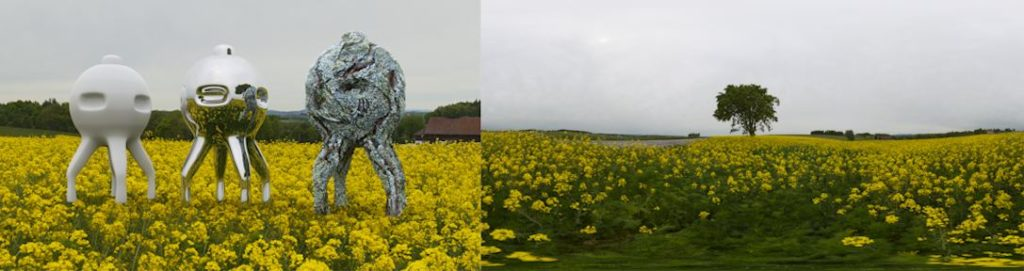 HDRI / 360° yellow canola field in spring